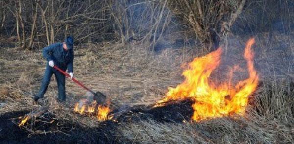 un incendio di sterpaglie